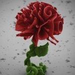 Nanojardines: flores de nanocristales