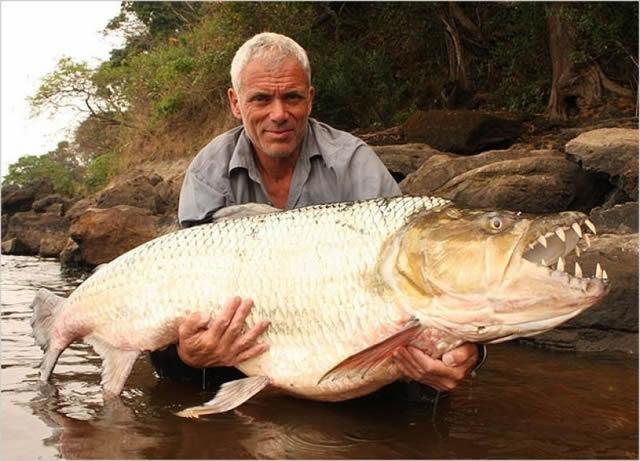 Monstruos de Río Jeremy Wade (12)
