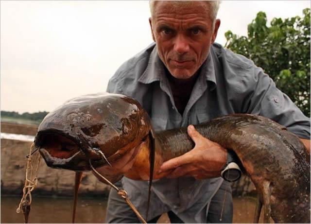 Monstruos de Río Jeremy Wade (10)
