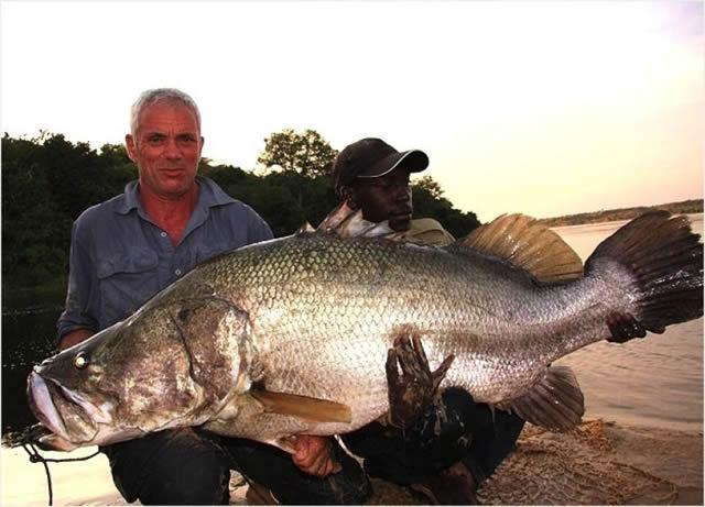 Monstruos de Río Jeremy Wade (7)