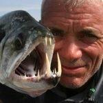 21 increíbles y aterradores Monstruos de Río