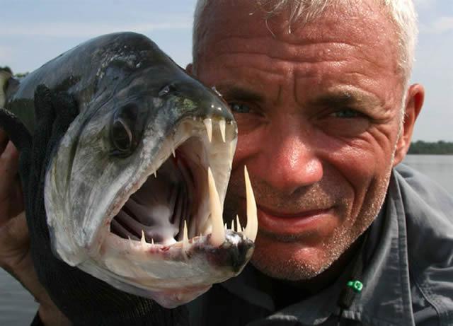 Monstruos de Río Jeremy Wade (15)