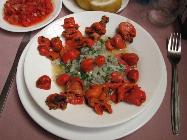 P. chilensis platillo comida