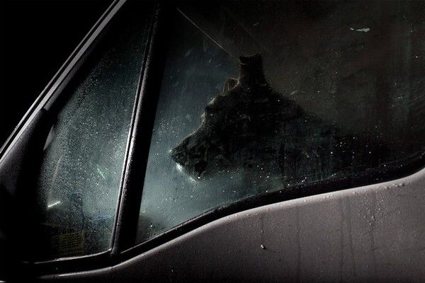 The Silence of Dogs in Cars (2)