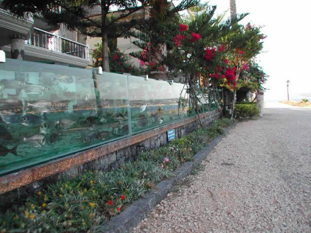 Muro Acuario Cesme Turquia (6)