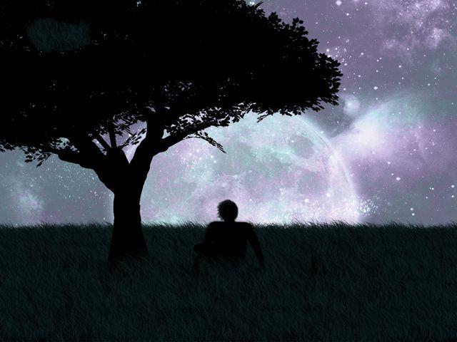 ¿Porqué soñamos? 10 teorias (10)