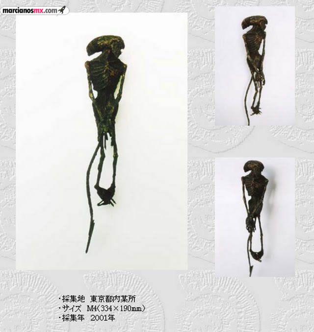Criaturas Monstruosas Hajime Emoto (8)