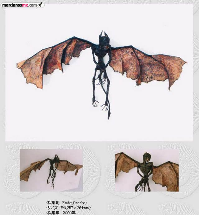 Criaturas Monstruosas Hajime Emoto (1)