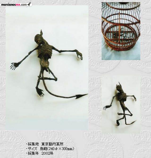 Criaturas Monstruosas Hajime Emoto (7)