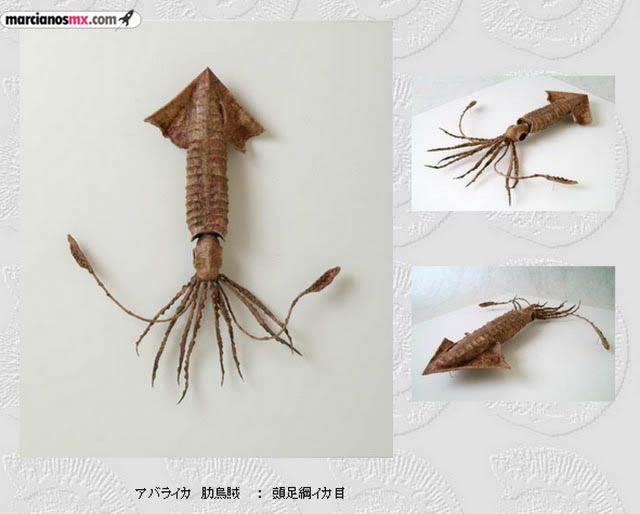 Criaturas Monstruosas Hajime Emoto (23)