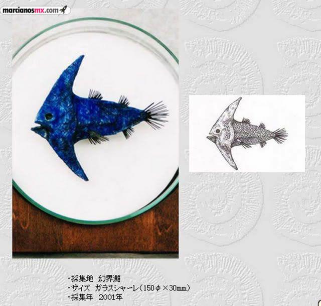 Criaturas Monstruosas Hajime Emoto (6)