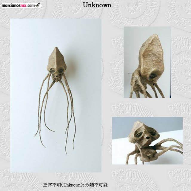 Criaturas Monstruosas Hajime Emoto (20)