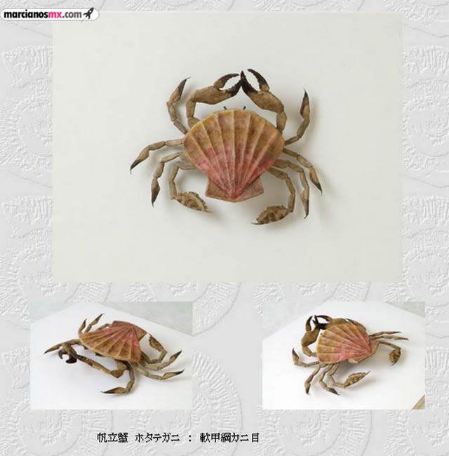 Criaturas Monstruosas Hajime Emoto (22)
