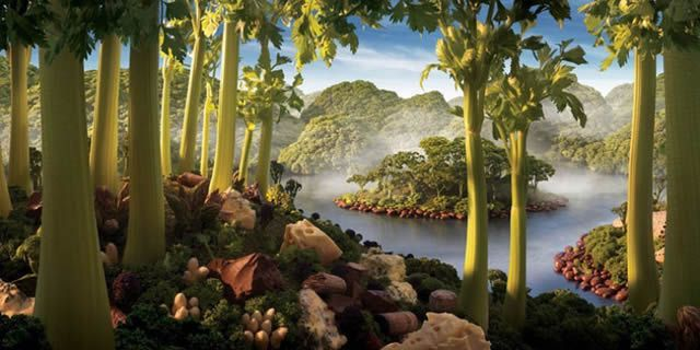 Carl Warner Foodscapes (17)