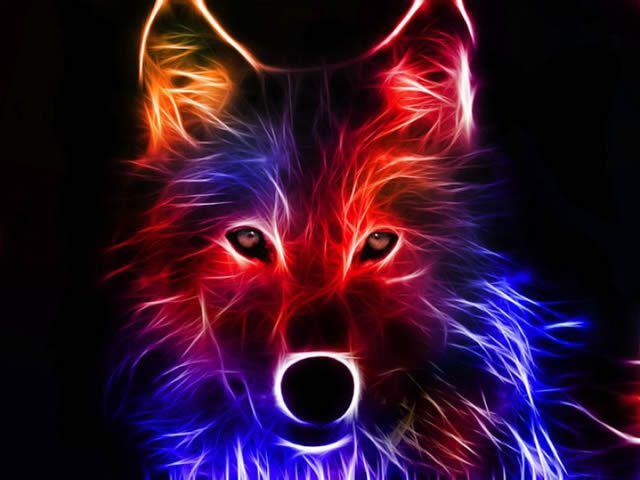 animales electrizantes (16)