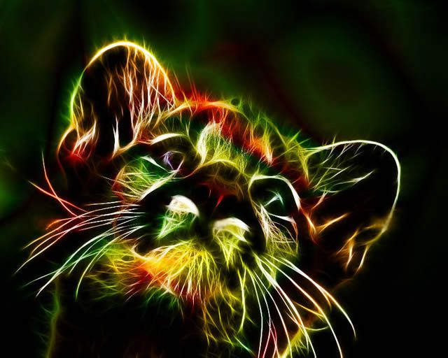 animales electrizantes (15)