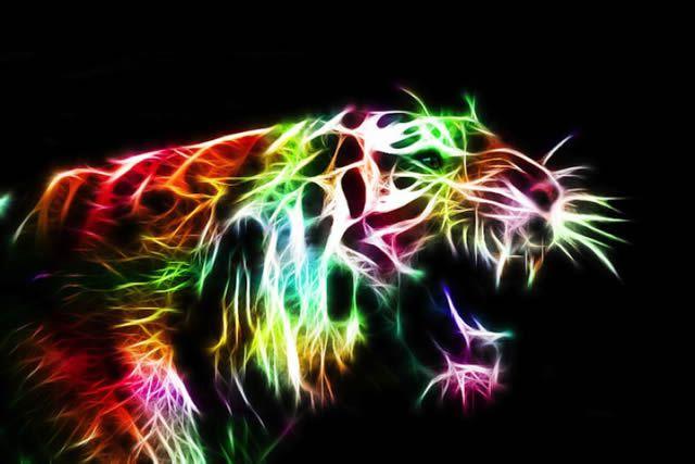animales electrizantes (5)