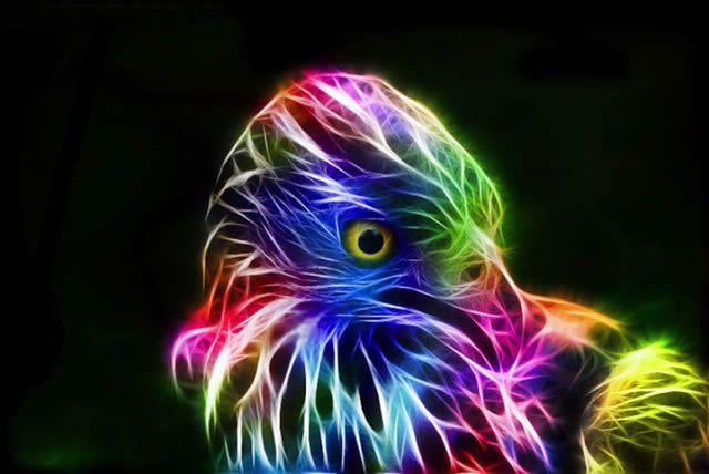 animales electrizantes (3)