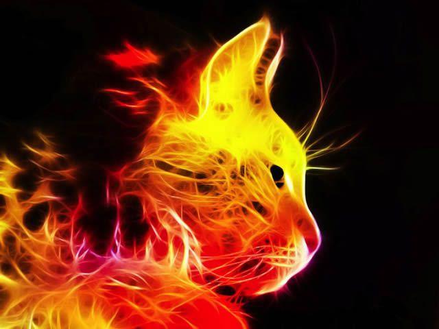 animales electrizantes (2)
