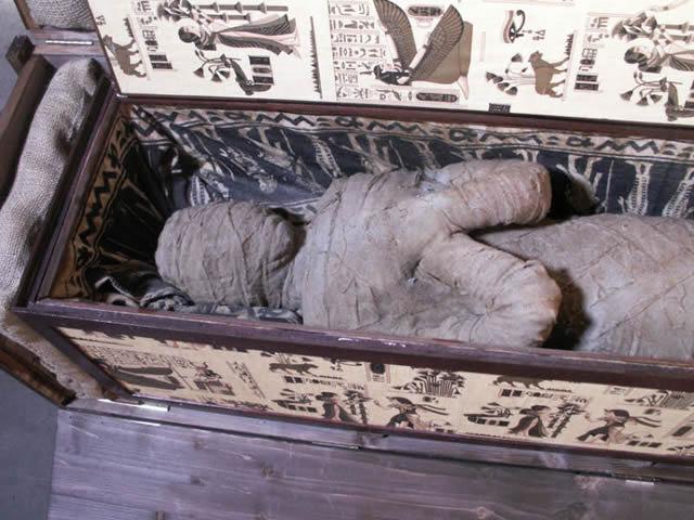 momia sotano abuela alemania (5)
