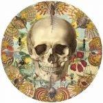 Ilustraciones anatómicas y perturbadoras de Juan Gatti