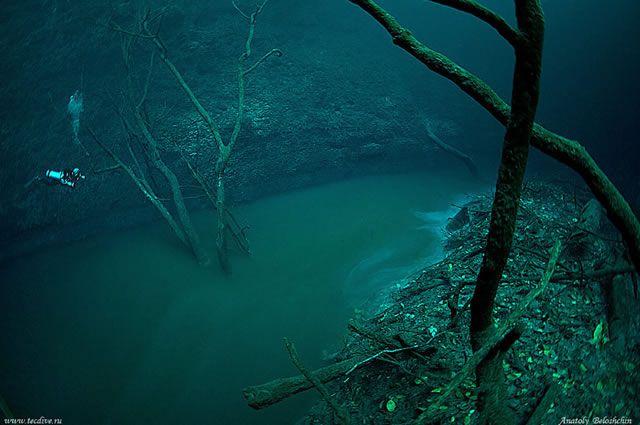 Cenote Angelita rio subterraneo (2)