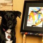 Perra pintora dona las ventas de sus cuadros a institución protectora de animales