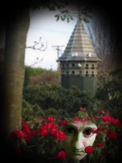 Alucinaciones del síndrome de Charles Bonnet (5)