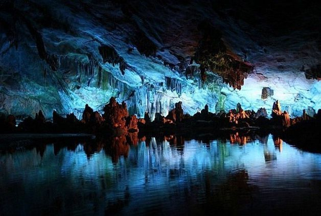 Glowworm Caves Nueva Zelanda (3)