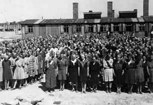 Mujeres del campo de judías húngaras