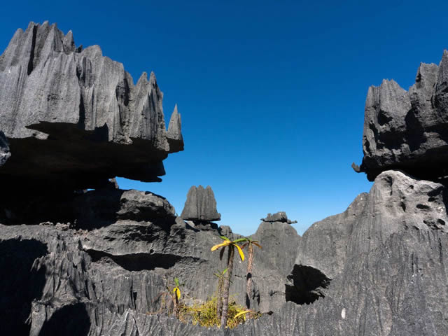 Tsingy de Bernaraha