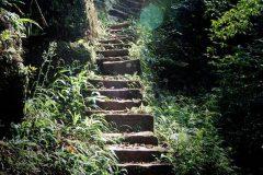 Love Ladder Escaleras Amor China (3)