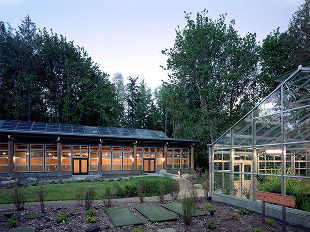 IslandWood escuela bosque (2)
