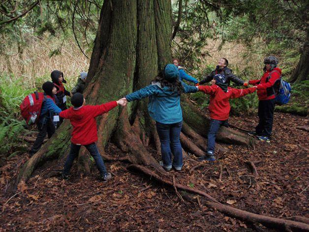 IslandWood escuela bosque (9)