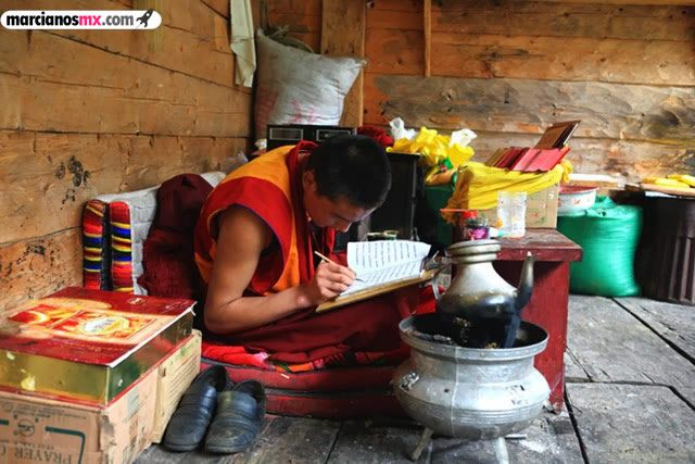 Funeral Bebés Arboles Tibet (18)