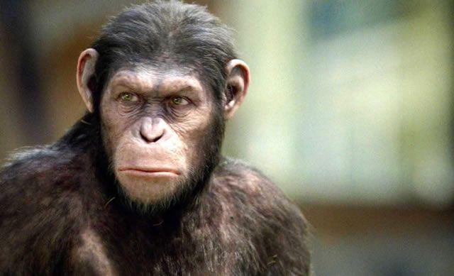 hombre-mono
