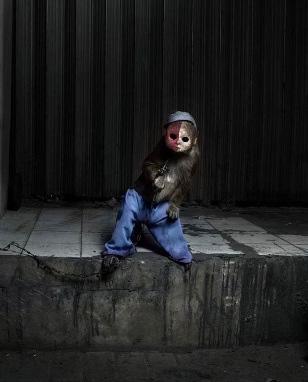 Perttu Saska monos enmascarados (9)