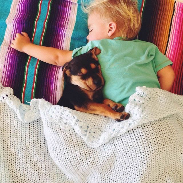 Fotos Siesta de Beau y Theo (10)