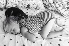Fotos Siesta de Beau y Theo (5)