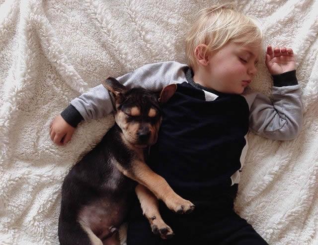 Fotos Siesta de Beau y Theo (6)