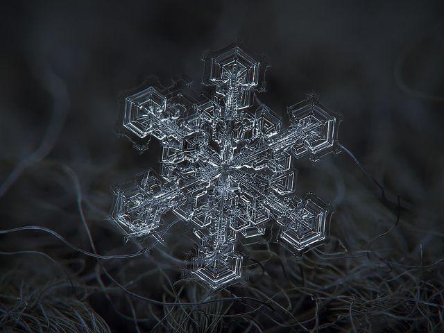 Fotografías de copos de nieve (20)