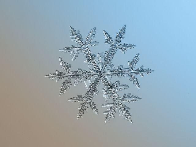 Fotografías de copos de nieve (18)