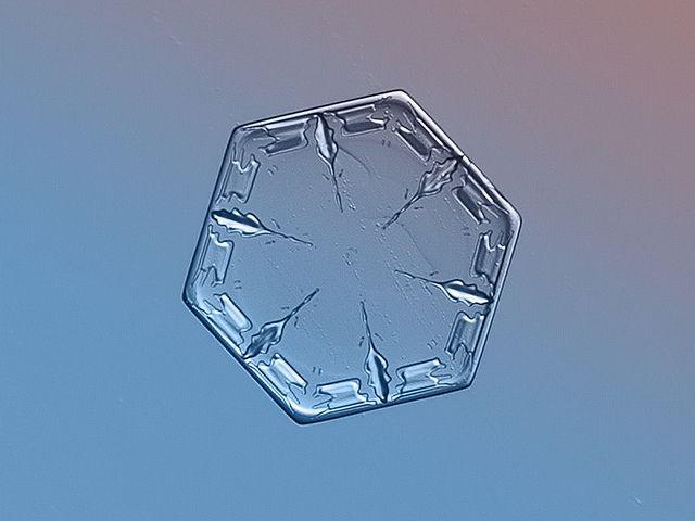 Fotografías de copos de nieve (6)