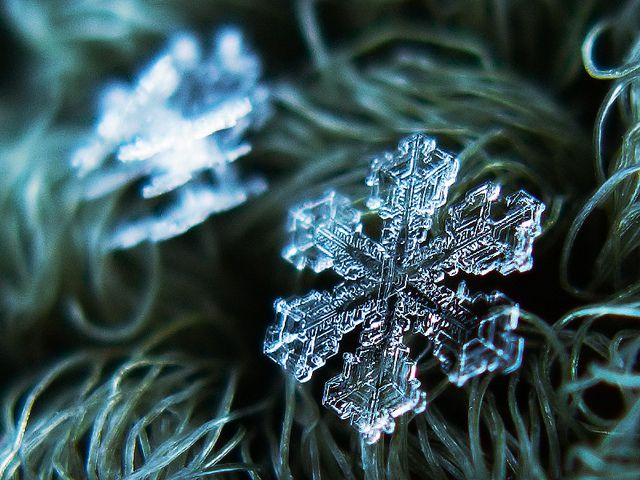 Fotografías de copos de nieve (2)