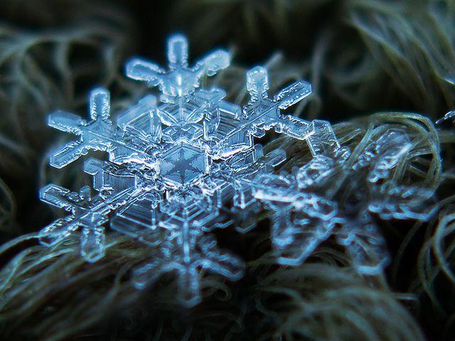 Fotografías de copos de nieve (1)