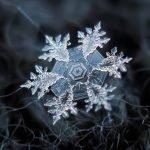 Fotografías de copos de nieve hechas con dispositivo casero