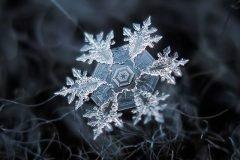 Fotografías de copos de nieve (25)