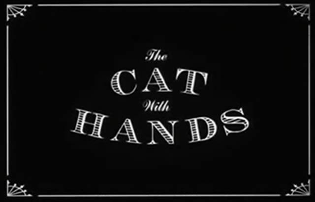 gato con manos corto (1)