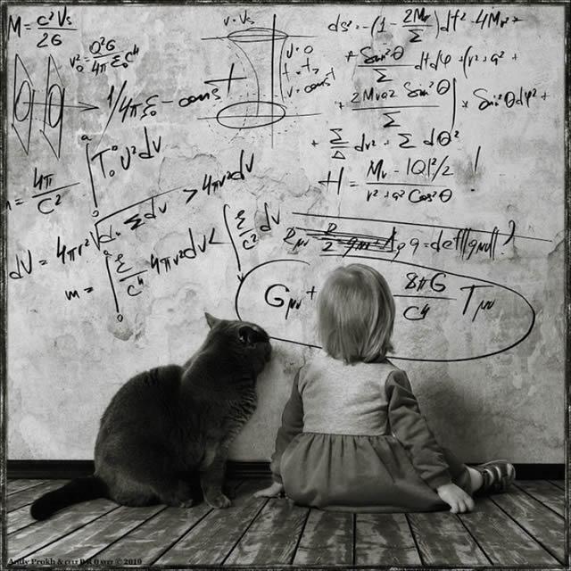 Andy Prokh Niña y el Gato (17)