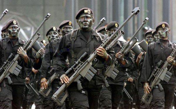 Fuerzas Especiales de México